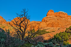 Arches National Park Utah Landscape Royalty Free Stock Photography