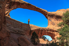 Arches National Park. Utah, USA Royalty Free Stock Photography