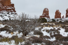 Arches National Park in Utah Royalty Free Stock Photography