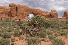 Archi della roccia rossa Immagine Stock Libera da Diritti