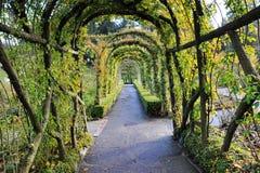 Archi e percorso del giardino fotografia stock