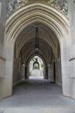 Archi gotici Fotografie Stock