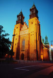 archicathedral νύχτα Πόζναν βασιλικών Στοκ εικόνες με δικαίωμα ελεύθερης χρήσης