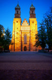 Archicathedral Basilica in Poznan by night Royalty Free Stock Photography