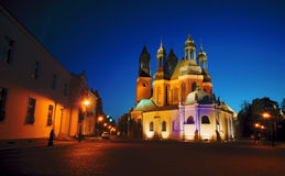 Archicathedral Basilica in Poznan by night Royalty Free Stock Photos
