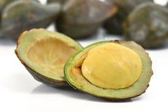 archidendron jiringa种子 库存图片
