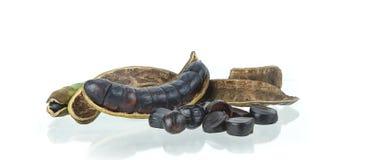 Archidendron jiringa - odoru warzywo na bielu Obraz Stock