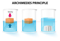 Archimedes principle. The buoyant force acting on an object is equal to the weight of the displaced fluid Stock Photography