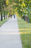 Arching Green Trees With Cyclists During Summer. Moorhead, Minnesota, United States - July 21, 2015: Foot path with arching trees in summer with people biking in Royalty Free Stock Images