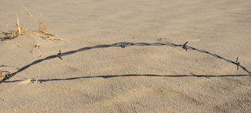 Arching Strand of Barbed Wire Stock Images