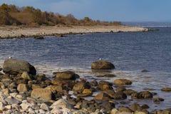 Archipelago beach at the Jomfruland Island, Norway Stock Images