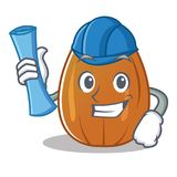 Architect almond nut character cartoon Stock Images