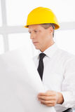 Architect with blueprint. Royalty Free Stock Images