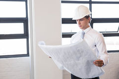 Architect looking at blueprint Stock Photos