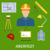 Architect profession with flat icons Royalty Free Stock Photography