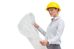 Architect studying plan with yellow helmet Royalty Free Stock Image