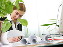 Architect at work 2 royalty free stock photography
