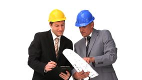 Architects looking at the construction plan. Against a white background stock footage
