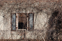 Architectural Decay Royalty Free Stock Photo
