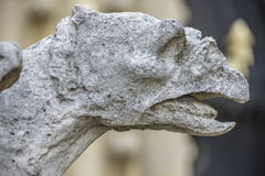Architectural Detail of Gargoyle statue in Notre-dame Stock Images