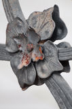 Architectural detail, metallic flower Royalty Free Stock Images