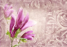 Architectural details. Antique wall in grunge style with meander, capitals, friezes and flower magnolia. Royalty Free Stock Images