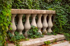 Architectural element balustrade. Braiding twine green plants royalty free stock images