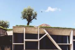 Architectural futuristic park stock photo
