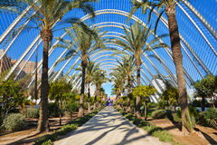 Architectural garden of L`Umbracle,Valencia Stock Images