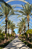 Architectural garden of L`Umbracle,Valencia Stock Photography