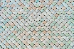 Architectural Mesh Detail With Fish Scales Texture