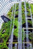 Architectural Photo of Man Made Water Falls on Green House during Daytime Royalty Free Stock Image