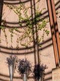 Architecturale details, Las Vegas, Nevada Royalty-vrije Stock Fotografie