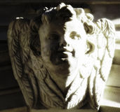 Architecture angel. Stock Images