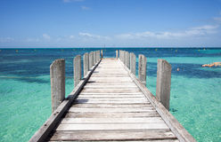 Architecture d'océan photos libres de droits