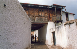 Architecture de Harar Photos libres de droits