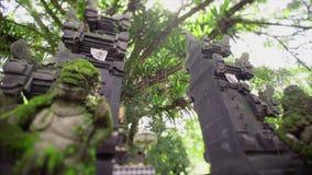 Architecture de tradicion de Balinese clips vidéos