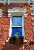 Architecture and Flower Box. Elegant architecture enhances this window and flower box, in Bozeman, Montana Stock Photos