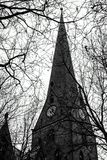 Architecture of Germany. Cityscapes in Hamburg. He tower with clock behind branches royalty free stock photo