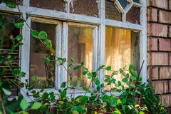 Architecture, House, Window, Shield Stock Images