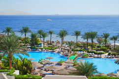 Nature of Egypt, city Sharm El - Sheikh Royalty Free Stock Image