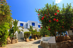 Architecture in Panarea Royalty Free Stock Images