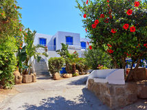 Architecture in Panarea Royalty Free Stock Photography