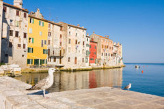 Architecture of Rovinj, Croatia. Istria touristic attraction Royalty Free Stock Images