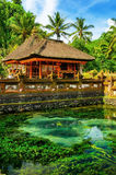Traditional balinese architecture. The Pura Besaki Royalty Free Stock Images