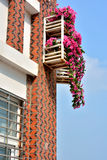 Architecture window with flower. Decorated window with flower under blue sky, shown beautiful living environment and color matching Stock Photography