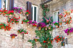 Architectures and religion in Assisi. Italy,Umbria,Assisi,the facade of an ancient house in the old country center Royalty Free Stock Photos