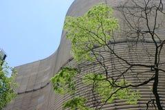 Architectuur in Sao Paulo Stock Afbeeldingen