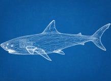 Architekt Blueprint des weißen Hais stockbilder