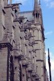 Architektoniczni szczegóły Katedralny Notre Damae de Obraz Stock
